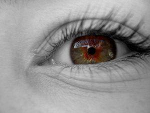 eye-1542065